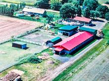 Hobby farm for sale in Saint-Mathias-sur-Richelieu, Montérégie, 24 - 28, Chemin du Cordon, 13204712 - Centris.ca