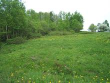 Lot for sale in Sainte-Irène, Bas-Saint-Laurent, Rue  Lavoie, 17326397 - Centris.ca