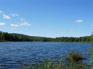Land for sale in Rivière-Rouge, Laurentides, 8536, Chemin du Lac-Kiamika, 26059725 - Centris.ca