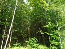 Land for sale in Nantes, Estrie, Rue des Érables, 13470342 - Centris.ca