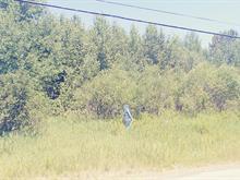 Lot for sale in Saint-Charles-de-Bourget, Saguenay/Lac-Saint-Jean, 100, 2e Rang, 23879752 - Centris.ca