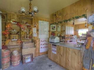 Hobby farm for sale in Kinnear's Mills, Chaudière-Appalaches, 1041, 3e Rang, 22591052 - Centris.ca