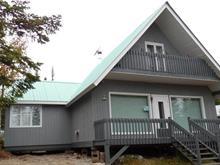 Maison à vendre à Mont-Valin, Saguenay/Lac-Saint-Jean, 1008, Chemin  Lac-Doumic, 11182144 - Centris