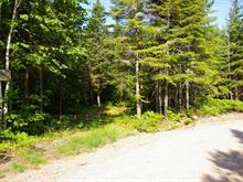 Lot for sale in Lac-Bouchette, Saguenay/Lac-Saint-Jean, 216, Chemin des Patriotes, 21878417 - Centris.ca