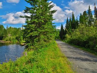 Terre à vendre à Ivry-sur-le-Lac, Laurentides, Chemin du Lac-de-la-Grise, 11691722 - Centris.ca