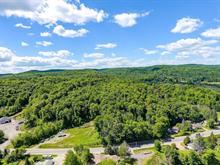 Lot for sale in Val-des-Monts, Outaouais, 733, Route  Principale, 23335693 - Centris