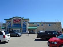 Commercial building for sale in Saint-Pascal, Bas-Saint-Laurent, 400, Avenue  Chapleau, 17092486 - Centris.ca
