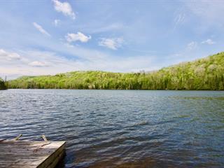 Terrain à vendre à Amherst, Laurentides, Route  323 Nord, 15068882 - Centris.ca