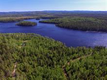Terrain à vendre à Saint-Félix-d'Otis, Saguenay/Lac-Saint-Jean, 3, Chemin du Lac-Goth, 25188029 - Centris.ca