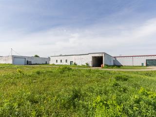 Industrial building for rent in Sainte-Agathe-de-Lotbinière, Chaudière-Appalaches, 2559, Rue  Saint-Pierre, 28597121 - Centris.ca