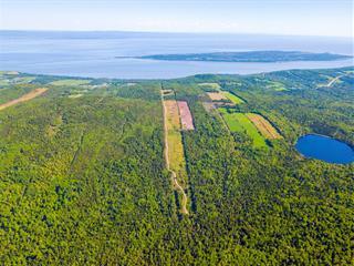 Terre à vendre à Les Éboulements, Capitale-Nationale, Rang  Saint-Joseph, 10832559 - Centris.ca