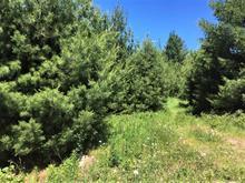 Terrain à vendre à Lac-Brome, Montérégie, 1, Chemin  Frank-Santerre, 20140790 - Centris