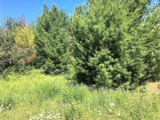 Terrain à vendre à Lac-Brome, Montérégie, 2, Chemin  Frank-Santerre, 16916649 - Centris.ca