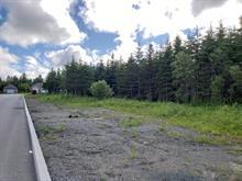Terrain à vendre à Lac-Etchemin, Chaudière-Appalaches, Rue  Lafontaine, 25861369 - Centris.ca