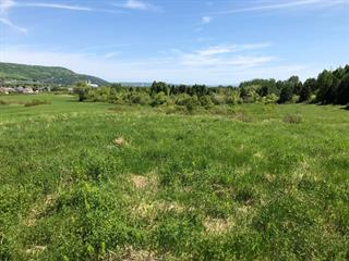 Lot for sale in Baie-Saint-Paul, Capitale-Nationale, 45, Chemin de l'Équerre, 13649466 - Centris.ca