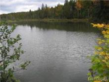 Terrain à vendre à Dudswell, Estrie, 1, Chemin  Laflamme, 12540318 - Centris.ca