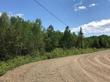 Lot for sale in Petite-Rivière-Saint-François, Capitale-Nationale, 3, Chemin  Marius-Barbeau, 27174168 - Centris.ca