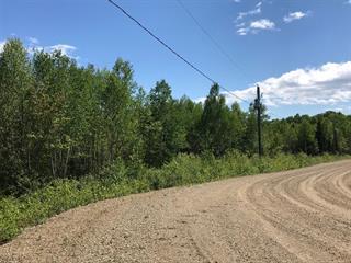 Terrain à vendre à Petite-Rivière-Saint-François, Capitale-Nationale, 3, Chemin  Marius-Barbeau, 27174168 - Centris.ca