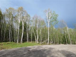 Lot for sale in La Macaza, Laurentides, Chemin du Lac-Macaza, 23916307 - Centris.ca