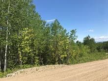 Lot for sale in Petite-Rivière-Saint-François, Capitale-Nationale, 31, Chemin  Victoria-Desgagnés, 10779946 - Centris