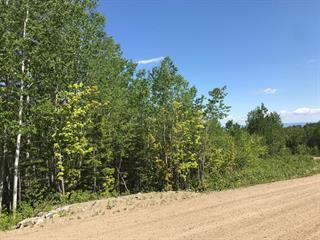 Terrain à vendre à Petite-Rivière-Saint-François, Capitale-Nationale, 33, Chemin  Victoria-Desgagnés, 9460883 - Centris.ca