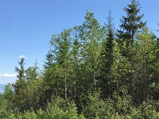 Lot for sale in Petite-Rivière-Saint-François, Capitale-Nationale, 40, Chemin  Victoria-Desgagnés, 27486175 - Centris.ca