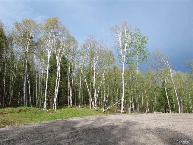 Lot for sale in La Macaza, Laurentides, Chemin du Lac-Macaza, 18386487 - Centris.ca