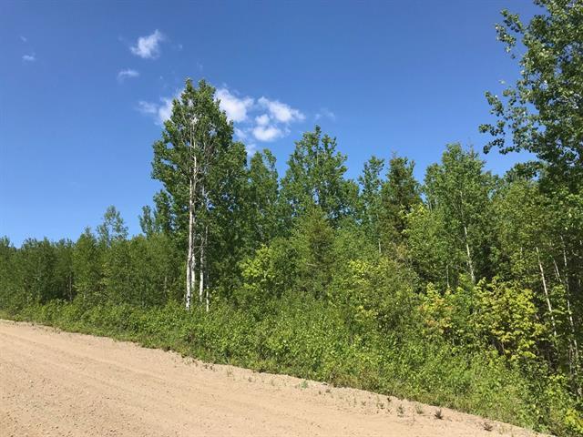 Terrain à vendre à Petite-Rivière-Saint-François, Capitale-Nationale, 36, Chemin  Victoria-Desgagnés, 26337343 - Centris.ca
