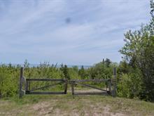 Terrain à vendre à Saint-Irénée, Capitale-Nationale, 675, Chemin des Bains, 20850102 - Centris.ca