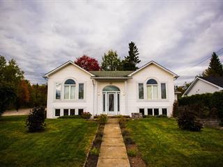 Maison à vendre à Témiscaming, Abitibi-Témiscamingue, 117, Rue  Lafort, 22860557 - Centris.ca