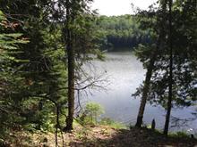 Lot for sale in Alleyn-et-Cawood, Outaouais, Chemin du Lac-de-la-Roche, 28196386 - Centris.ca