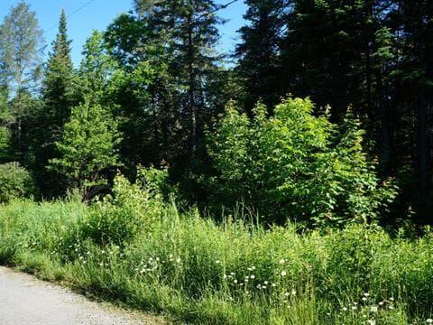 Terrain à vendre à Mille-Isles, Laurentides, Chemin  Pierre, 20710064 - Centris.ca