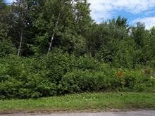 Terrain à vendre à Shannon, Capitale-Nationale, Rue  Mountain View, 28895112 - Centris.ca