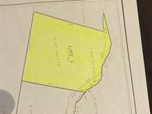 Lot for sale in La Pêche, Outaouais, 101, Chemin des Pins-Blancs, 18223163 - Centris.ca