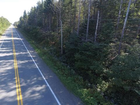 Terre à vendre à Sainte-Marguerite, Chaudière-Appalaches, Route  275, 12978024 - Centris.ca