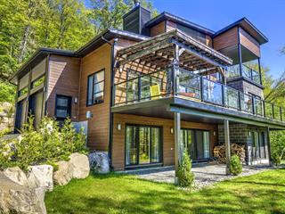 Maison à vendre à Saint-Donat (Lanaudière), Lanaudière, 60, Chemin du Versant, 22358232 - Centris.ca