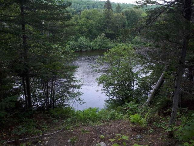 Lot for sale in Petit-Saguenay, Saguenay/Lac-Saint-Jean, Route  170, 16304941 - Centris.ca