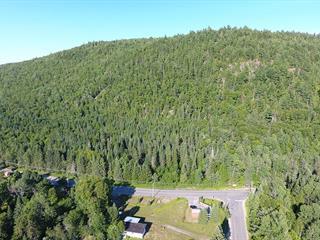Terrain à vendre à Saint-Donat (Lanaudière), Lanaudière, Route  125 Nord, 16859924 - Centris.ca