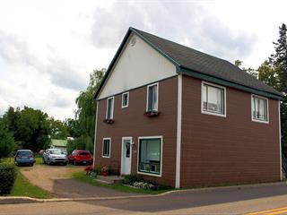 Duplex à vendre à Saint-Gabriel, Lanaudière, 208 - 210, Rue  Beauvilliers, 16396973 - Centris.ca