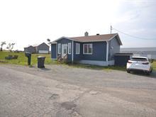 House for sale in Trois-Pistoles, Bas-Saint-Laurent, 47, 3e Rang Est, 20434981 - Centris.ca