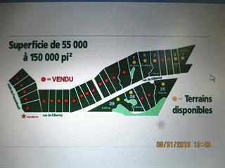 Terrain à vendre à Shannon, Capitale-Nationale, 584, Rue de Kilkenny, 24675750 - Centris.ca