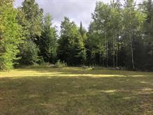 Terrain à vendre à Saint-Tite, Mauricie, Route du Lac-Pierre-Paul, 12687689 - Centris.ca