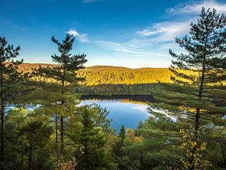 Terrain à vendre à Saint-Mathieu-du-Parc, Mauricie, Chemin du Lac-Jackson, 12938010 - Centris.ca