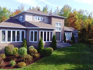 House for sale in Thetford Mines, Chaudière-Appalaches, 343, Chemin du Vallon, 23282960 - Centris.ca