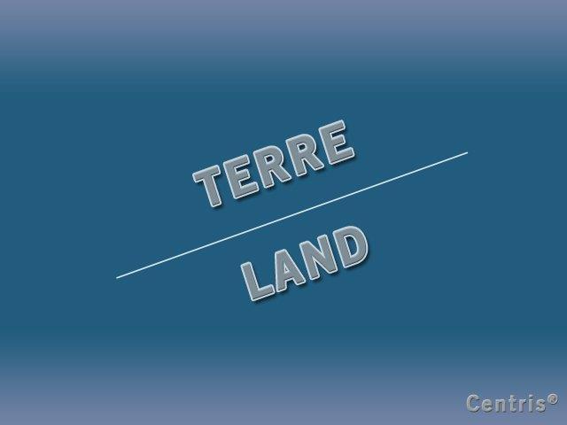 Terre à vendre à Sainte-Marie-de-Blandford, Centre-du-Québec, Route des Pionniers, 10198143 - Centris.ca