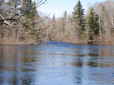 Terrain à vendre à Waltham, Outaouais, Chemin de la Rivière-Noire, 17991797 - Centris