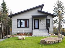 House for sale in Sainte-Brigitte-de-Laval, Capitale-Nationale, 103, Rue  Viau, 28024507 - Centris.ca