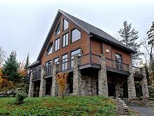 Maison à vendre à Sainte-Adèle, Laurentides, 4620, Rue de la Rogeloise, 27496740 - Centris.ca