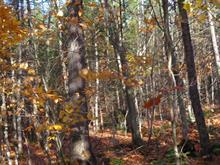 Terre à vendre à Sainte-Angèle-de-Prémont, Mauricie, Route  Picard, 12337524 - Centris.ca