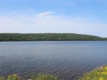 Terrain à vendre in Lac-Bouchette, Saguenay/Lac-Saint-Jean, 304, Chemin du Lac-Prinzèles, 14442980 - Centris.ca